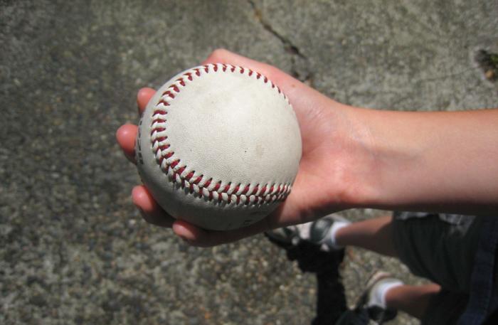 Seward ball