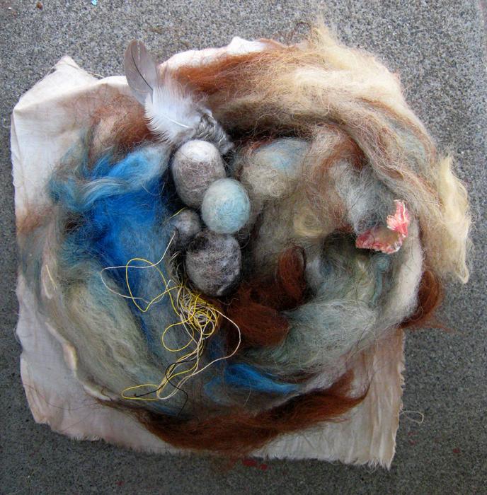 Drucilla's nest