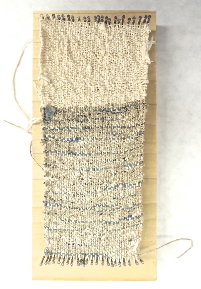 DSCN5997